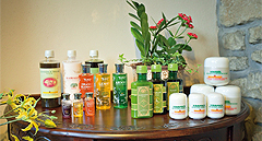 Auirvedic Products